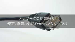 テレワークに効果絶大!安定、爆速、NURO光+LANケーブル